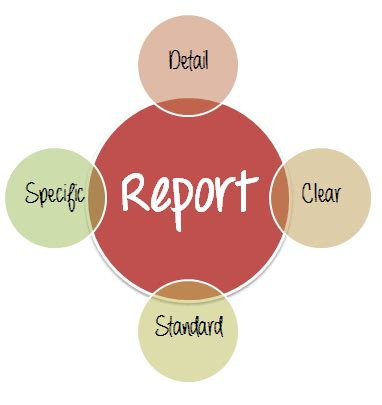 Project literature review reports
